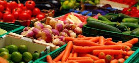 """Οι εξαγωγές νωπών οπωροκηπευτικών την τελευταία """"φυσιολογική"""" εβδομάδα"""
