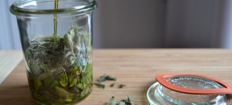 Τα αρωματικά φυτά της Ελλάδας μπορούν να γίνουν βάση για «λειτουργικά» τρόφιμα, ως εκχυλίσματα