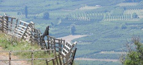 Ξεκινά η καταβολή του επιδόματος ορεινών και μειονεκτικών περιοχών σε 4.000 δικαιούχους