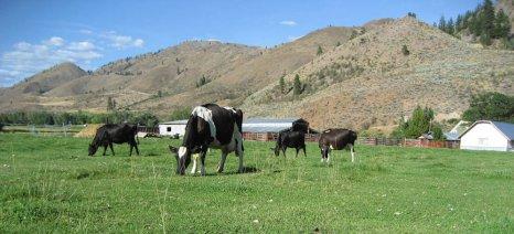 Από τις 10 Φεβρουαρίου οι δηλώσεις για τις νέες γεωργοπεριβαλλοντικές ενισχύσεις