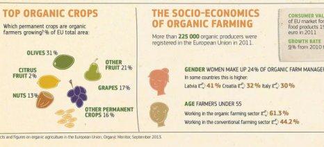 Στο 20% η διαφορά των αποδόσεων μεταξύ βιολογικών και συμβατικών καλλιεργειών