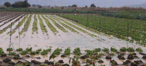 Έκτακτες κρατικές ενισχύσεις de minimis ζητά ο Δήμος Οροπεδίου Λασιθίου