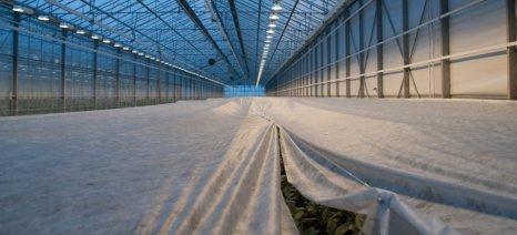 Είναι παράδειγμα προς μίμηση ή προς αποφυγή η Ολλανδία στην πρωτογενή παραγωγή;