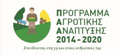Ημερίδα για τα αγροτικά προγράμματα και τις ομάδες παραγωγών στον Τύρναβο