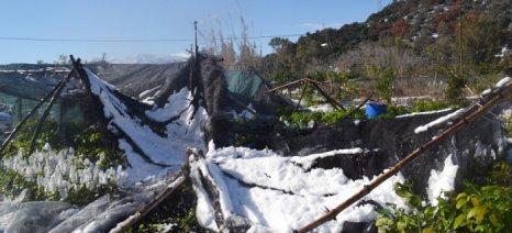 Καταγραφή ζημιών και δρομολόγηση αποζημιώσεων στο Νομό Χανίων