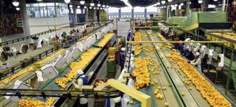 Διευκρινίσεις για την κρατική εποπτεία επί των Αγροτικών Συνεταιρισμών