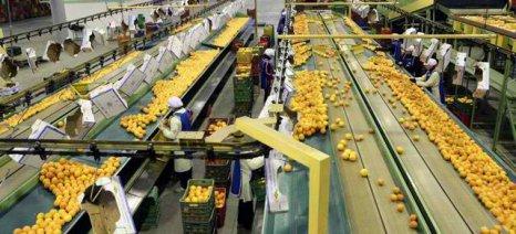 Υποχρέωση εγγραφής στο μητρώο πραγματικών δικαιούχων για συνεταιρισμούς και αγροτικές επιχειρήσεις