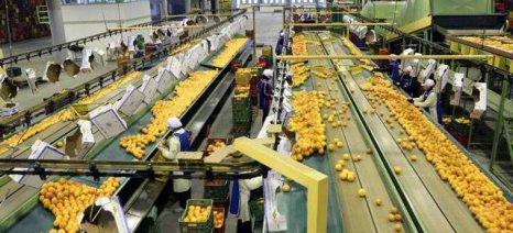 Σε τρεις δόσεις η ρύθμιση ασφαλιστικών οφειλών αγροτών, συνεταιρισμών και επιχειρήσεων