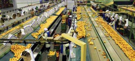 Από τα τέλη Νοεμβρίου νέοι φορολογικοί και ασφαλιστικοί συντελεστές για αγρότες και επιχειρήσεις