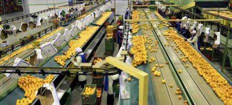 Οι οργανώσεις παραγωγών ενισχύουν τη θέση των αγροτών στην εφοδιαστική αλυσίδα τροφίμων