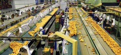 Στο 10% η φορολόγηση αγροτικών συνεταιρισμών και ομάδων παραγωγών για εισοδήματα από το 2020