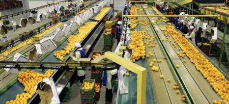 Κατάρτιση και πιστοποίηση εργαζομένων σε αγροδιατροφικές επιχειρήσεις από την ΟΣΕΓΟ