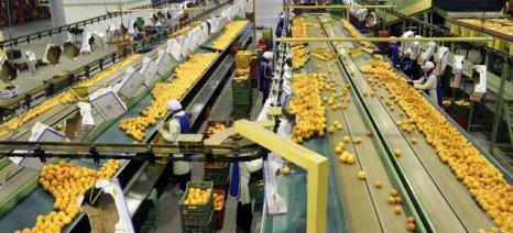 Διαβεβαιώσεις Βορίδη πως τα κυβερνητικά μέτρα αφορούν και αγροτικές επιχειρήσεις
