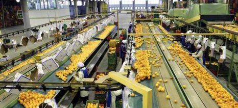 Με βεβαίωση εργαζομένου η πρόσβαση σε αγροτικές εκμεταλλεύσεις και επιχειρήσεις έως τις 6 Απριλίου