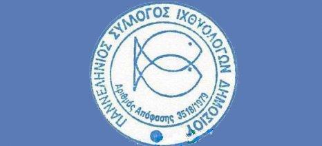 Οι ιχθυολόγοι του Δημοσίου διαβεβαιώνουν τους καταναλωτές για την ασφάλεια των αλιευμάτων του Σαρωνικού