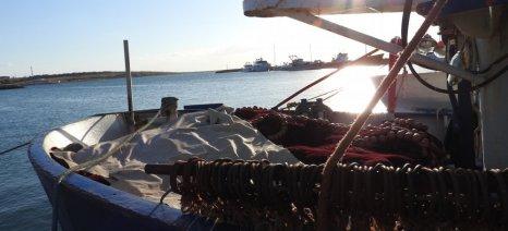 Εκτός έκτακτης ενίσχυσης μένουν οι αλιείς με συμπλοιοκτησία, σύμφωνα με τον Αλιευτικό Σύλλογο Βόλου