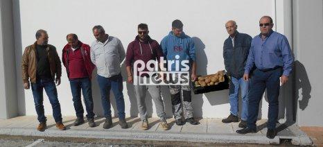 Ο Α.Σ. Τραγανού Ηλείας προσφεύγει στην δικαιοσύνη, καθώς εντόπισε περσινές πατάτες να πωλούνται ως φρέσκιες