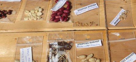 Πάνω από 20.000 καλλιεργητές ερασιτέχνες και επαγγελματίες προμηθεύονται σπόρους από το Πελίτι