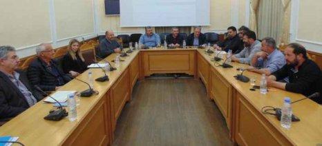 Παρουσιάστηκε η μελέτη της Περιφέρειας Κρήτης για την κατοχύρωση ως ΠΟΠ του «Αρνιού Κρήτης»