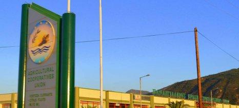 Παναιγιάλειος ΑΕΣ: Ξεκινούν την Τρίτη τα αιτήματα μεταβίβασης δικαιωμάτων βασικής ενίσχυσης