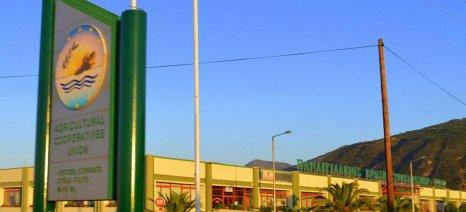Παναιγιάλειος: Ξεκινούν τη Δευτέρα οι υποβολές ενιαίας αίτησης ενίσχυσης παραγωγών