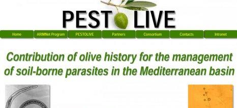 Πρόσληψη ενός επιστήμονα με σύμβαση από το ινστιτούτο του ΕΛΓΟ στο Ηράκλειο