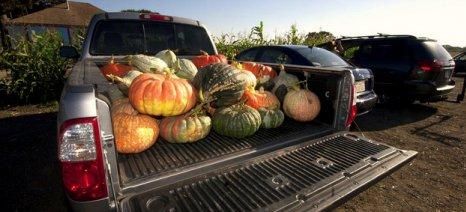 Τι αυξήσεις φέρνουν στα αγροτικά pick-up τα τέλη ταξινόμησης που ψηφίζει η κυβέρνηση την Κυριακή
