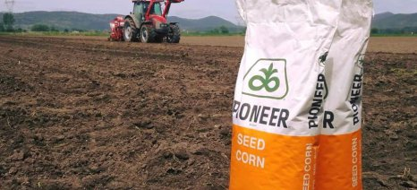 Τέσσερα νέα υβρίδια καλαμποκιού στον κατάλογο της Pioneer από την Corteva για το 2020