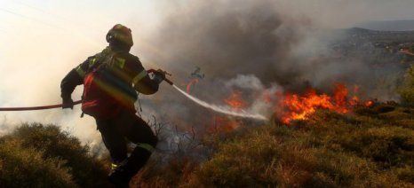 Ποιους απορριφθέντες φακέλους αγροτών για τα ΠΣΕΑ του 2011 επανεξετάζει ο ΕΛΓΑ