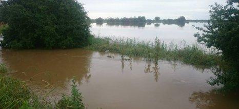 Αναγγελία στον ΕΛΓΑ για ζημιές από την ισχυρή βροχόπτωση στα Χανιά