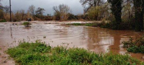 Καλαμάτα: Σύντομα το χρονοδιάγραμμα για τις αποζημιώσεις των αγροτών