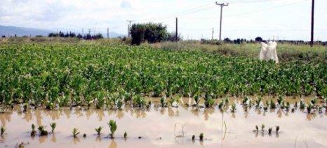Απλήρωτοι οι αγρότες του Πολυκάστρου για τις πλημμύρες του 2014