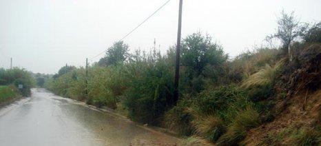 Ζημιές και προβλήματα με την πρώτη καταιγίδα στην Αμαλιάδα - δηλώσεις στον ΕΛΓΑ