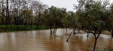 Σε κατάσταση έκτακτης ανάγκης η Πιερία μετά τις πλημμύρες της Παρασκευής - αποζημιώσεις ανακοίνωσε ο Τζανακόπουλος