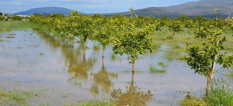 Ανοχύρωτοι οι αγρότες από τις επιπτώσεις της κλιματικής αλλαγής σύμφωνα με 30 βουλευτές της ΝΔ