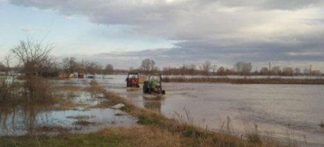 Άμεσο καθαρισμό αποστραγγιστικών δικτύων ζητά η Ομοσπονδία Αγροτικών Συλλόγων Έβρου