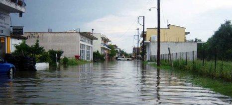 Να γίνουν τώρα οι εκτιμήσεις για τις ζημιές στα βαμβάκια από τις βροχές ζητά ο δήμος Παλαμά