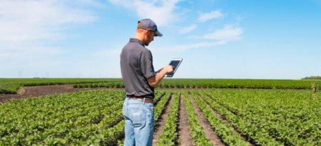 Αγρότες και ελεύθεροι επαγγελματίες οι μεγάλοι κερδισμένοι