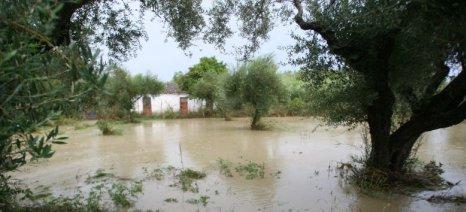 Ερώτηση Ανδριανού στη Βουλή για τις αποζημιώσεις απο τις πλημμύρες στο Άργος