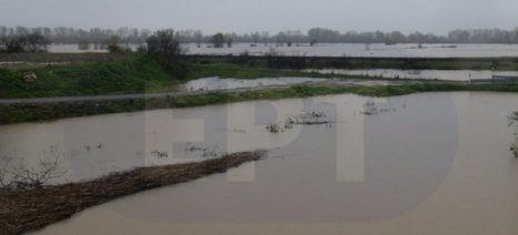 Μέχρι τις 10 Απριλίου δηλώσεις ζημιάς στον Έβρο για τις πλημμύρες