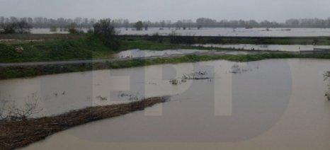 Τζελέπης: «Πολλά και ανυπέρβλητα τα προβλήματα των αγροτών της περιοχής του Δήμου Σουφλίου»