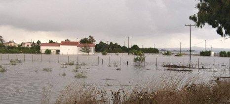 Μέχρι 19 Σεπτεμβρίου οι ενστάσεις για τα πορίσματα του ΕΛΓΑ στον δήμο Καλαμάτας