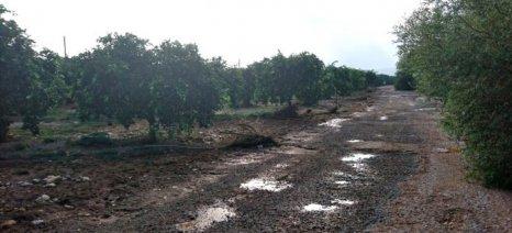Έως 6 Ιουνίου κατατίθενται τα δικαιολογητικά των πλημμυροπαθών αγροτικών επιχειρήσεων της Λακωνίας