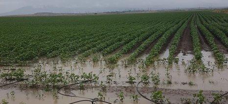 Μέχρι τις 23 Δεκεμβρίου οι ενστάσεις για τα πορίσματα του ΕΛΓΑ από τις ζημιές στο δήμο Ορχομενού (πλημμύρες 2019)