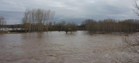 Συστάσεις προς τους κτηνοτρόφους για ενδεχόμενες πλημμύρες στον Έβρο