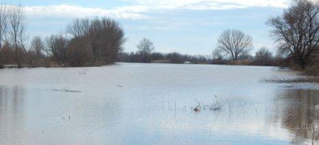 Δηλώσεις ζημιάς σε χωράφια δέχονται μέχρι τις 8/5 τα ΚΕΠ Ορεστιάδας και Βύσσας
