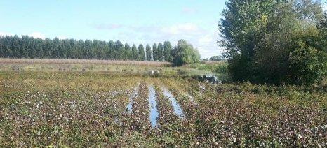 Το νερό έχει λιμνάσει στους κάμπους, διακοπή στις αγροτικές εργασίες