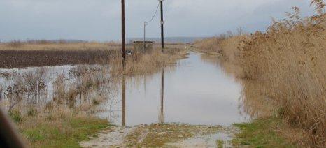 Μέχρι 10 Απριλίου οι δηλώσεις ζημιάς από τις έντονες βροχοπτώσεις στη Βέροια