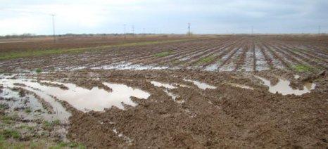 Σε εξέλιξη οι εξατομικευμένες εκτιμήσεις για τις ζημιές στην αγροτική παραγωγή