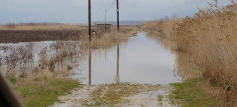 Καραγγιαννίδης: Δεν θα καλλιεργήσουν στο Νευροκόπι - Αποστόλου: Θα δούμε για de minimis
